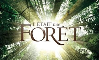 Il-était-une-forêt-logo